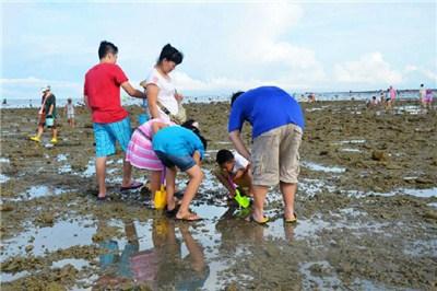 【跟团】厦门环岛路赶海+帆船体验一日游|网红亲子+海鲜大餐+抓鱼虾螃蟹